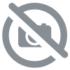 Vernis à ongles ZAO (rouge passion 668)